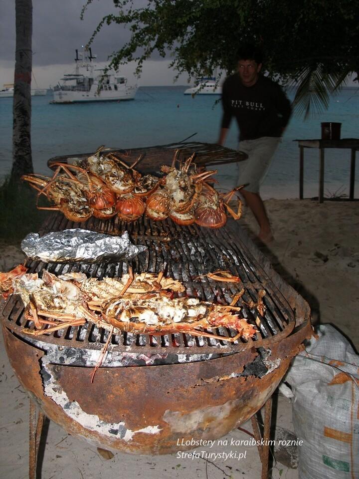 Karaiby lobstery