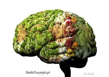 zrozumieć wegetarian